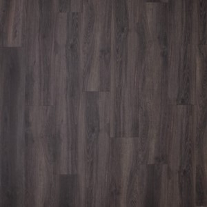 Gelasta City (dryback) Century Oak Brown